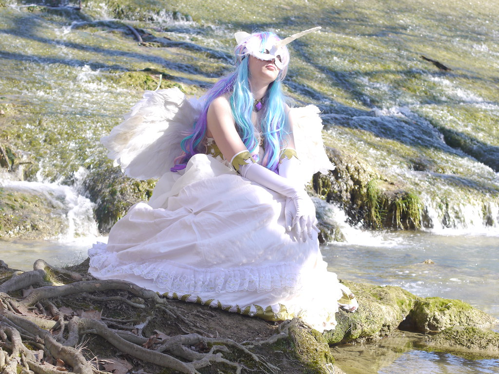 related image - Shooting Celestia - My Little Pony - 2014-02-23- P1780581