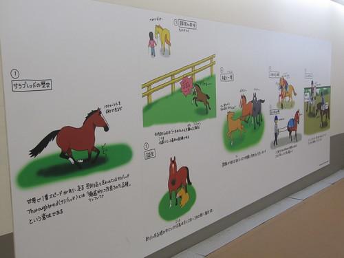 中京競馬場のおがわじゅりイラスト