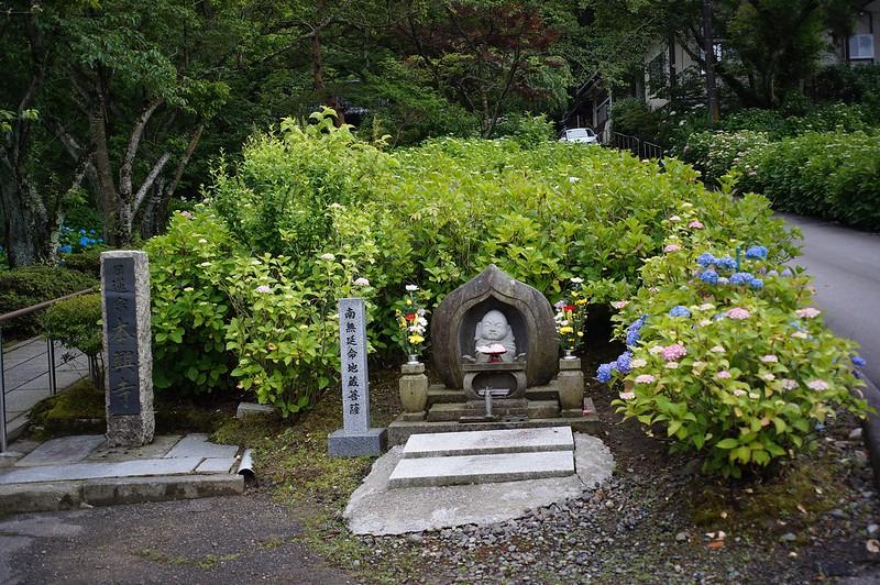 金沢紫陽花寺本興寺
