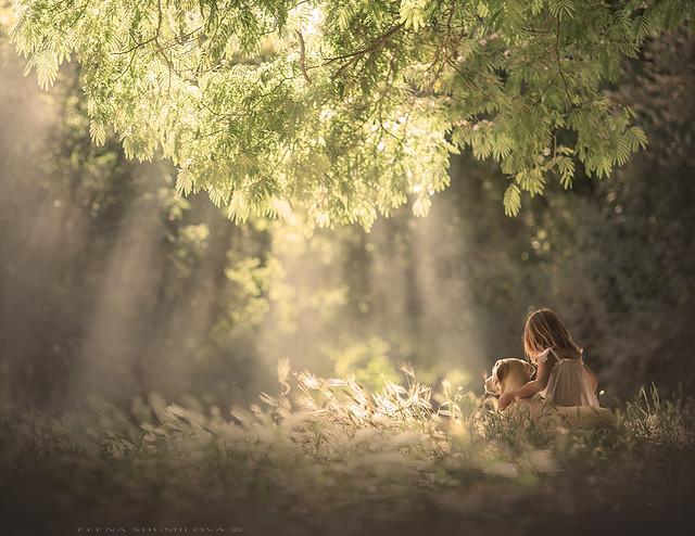 aleshurik - Under the big tree..