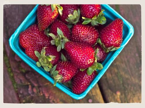 strawberries 01 050512