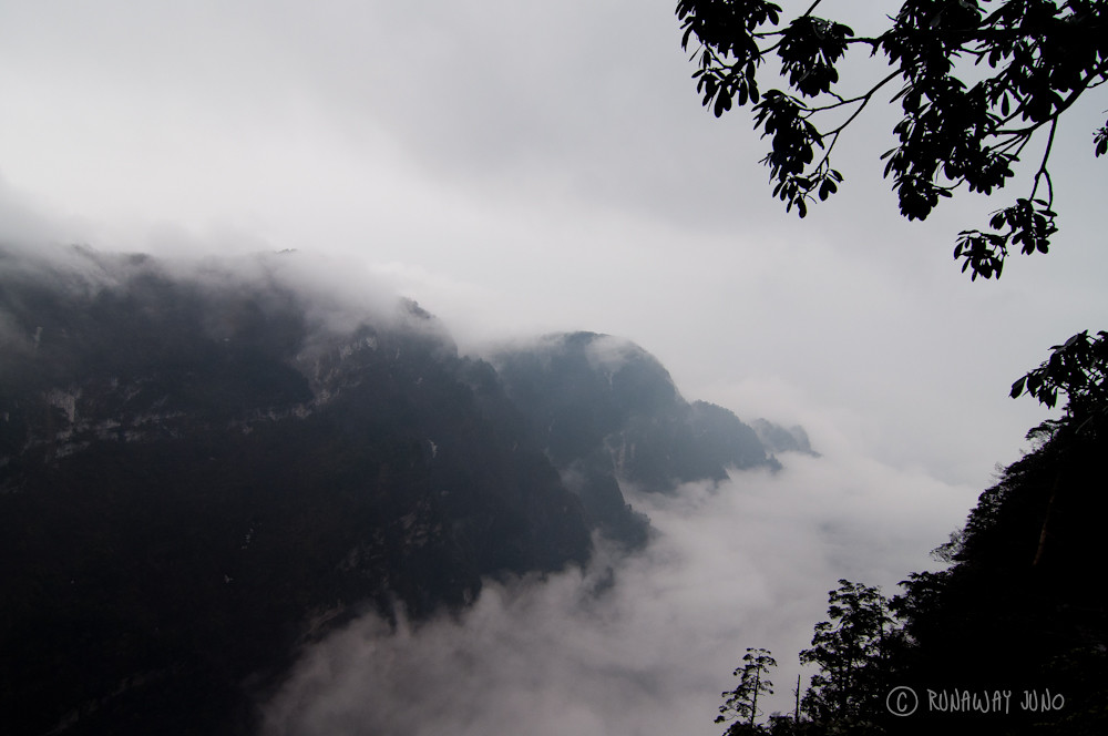 The highlight of the hiking: walking above the clouds in Emei Shan