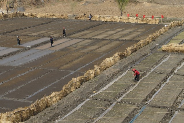 Pyongyang - Wonsan Countyside North Korea