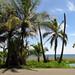 The black beach in  Puerto Viejo, Costa Rica 08MAY12