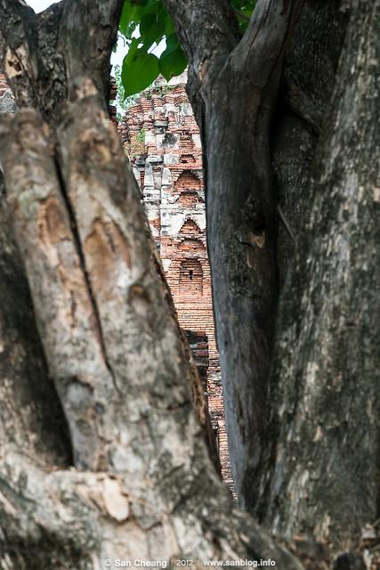 Thailand_2012-02-26-7656_2