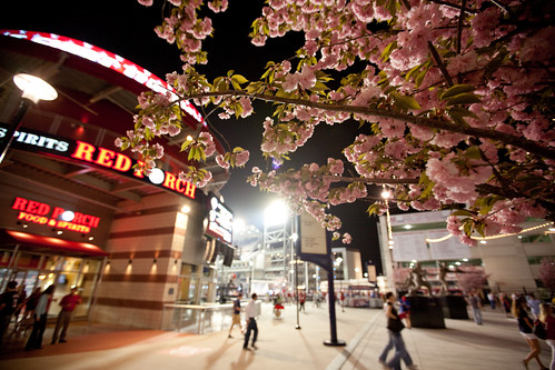outside Nationals Park in DC (by: Ed Schipul, creative commons license)
