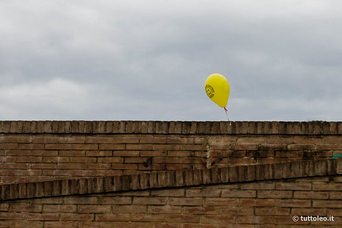 """This is a """"balloone"""" (balloon + alone)"""