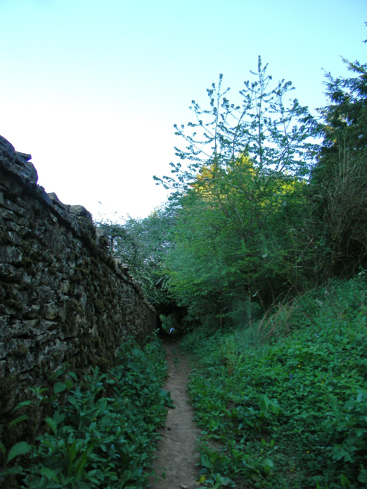 Long wall Moreton-in-Marsh Circular