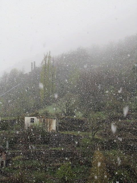 Nieva en la casa de los solitarios