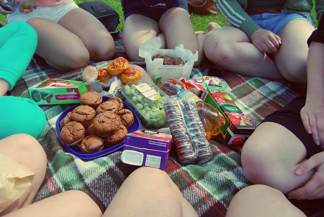 piknik8