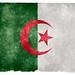 Algeria Grunge Flag