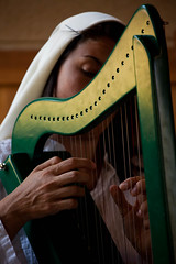string instrument, clãrsach, harp, close-up, string instrument,