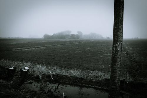 Nebel in Nordfriesland