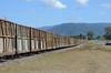 009 sugarcane train, Mt Ossa region, Queensland