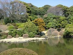 20120328小石川植物園-115