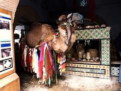 The Famous Well at Kairouan, Tunisia