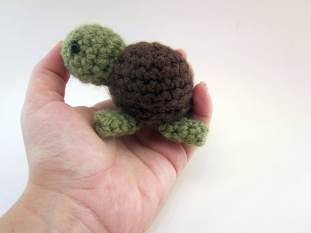 Turtle in palm