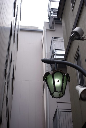 Street lamp in the shape of eel