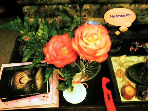 Flowers for Beltane! by northwoodsluna