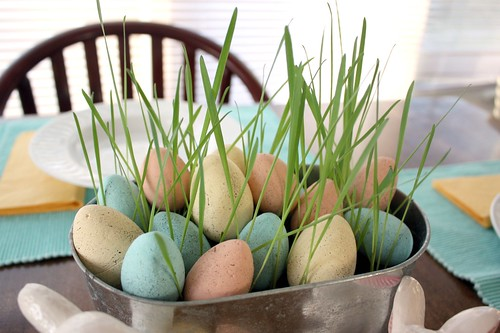 painted-robins-egg-easter-eggs