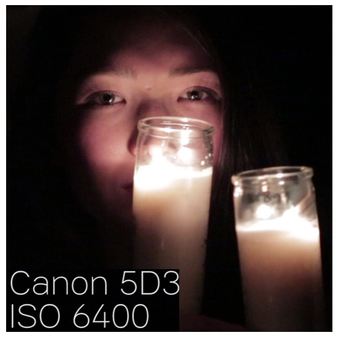 canon5d3_iso6400_100percentcrop
