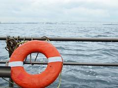 dinghy(0.0), sailing(0.0), watercraft rowing(0.0), boating(0.0), water(1.0), sea(1.0), ocean(1.0), lifebuoy(1.0), shore(1.0), watercraft(1.0),