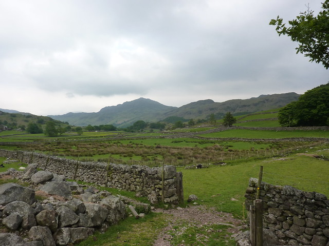 Harter Fell, seen near Boot