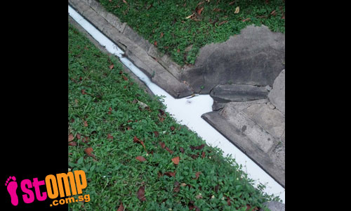 Ew, white liquid spotted in drain in the Katong area