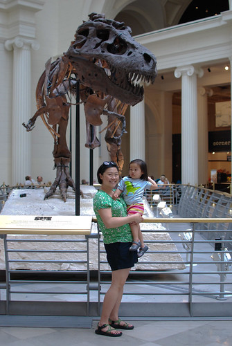 In front of Sue, the largest and most complete (80%) Tyrannosaurus rex skeleton currently known.