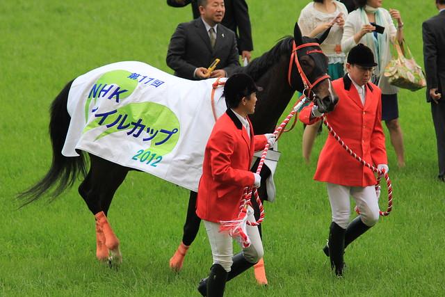 NHKマイルC勝ち馬 カレンブラックヒル