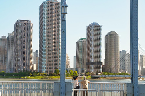 pair of life on Eitaibashi-bridge