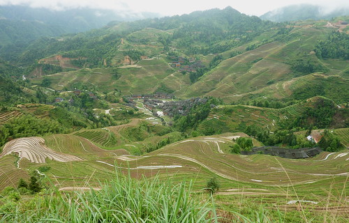 C-Guangxi-Dazhai-Descente (4)