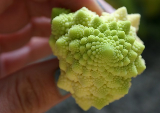 romanesco_3_20120430 - Version 2