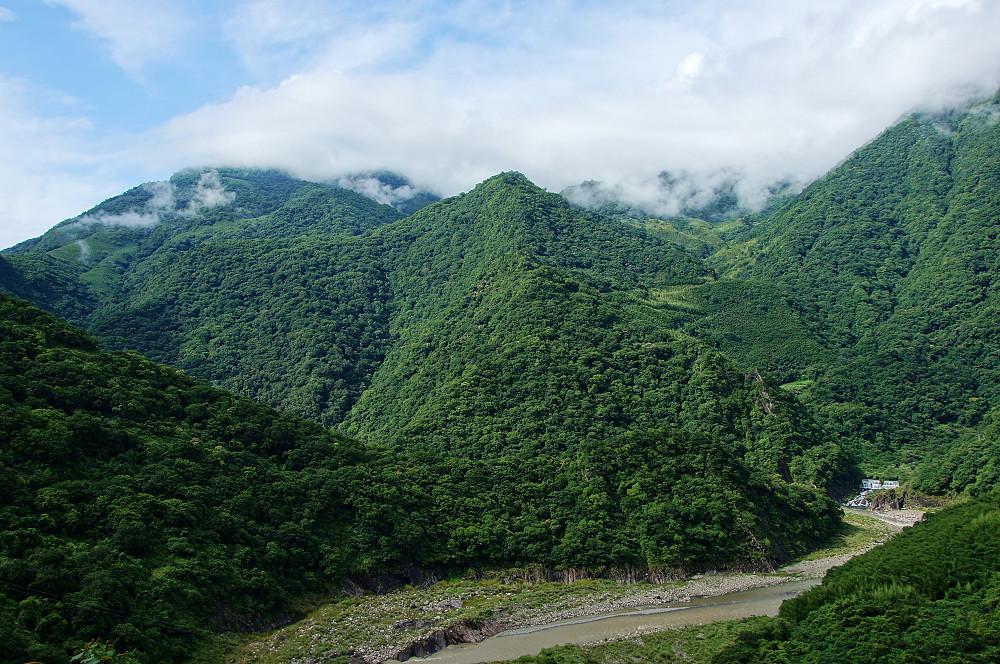 巨木群,與往拉拉山的路上-111