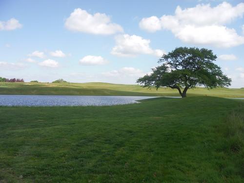 Oxfordshire Golf Club (I)