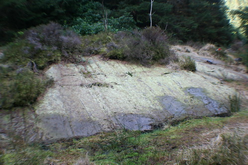 Site of Prehistoric Rock Art, Stronach Wood
