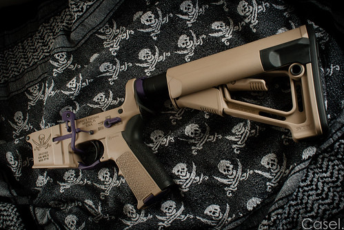 Duracoat'd Spike's Tactical AR-15 Lower