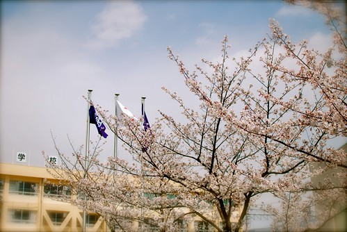 entrance ceremony in spring
