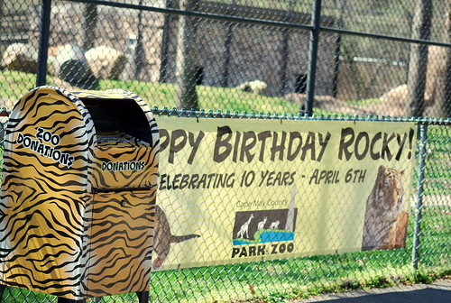 zoo - birthday