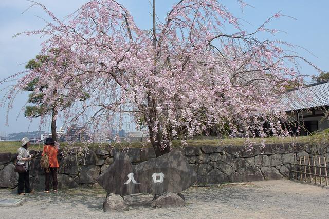 2012-kyushu-500