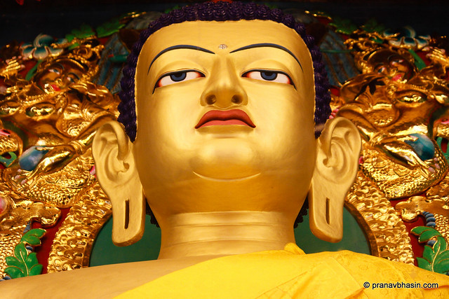 The Golden Buddha by Pranav Bhasin