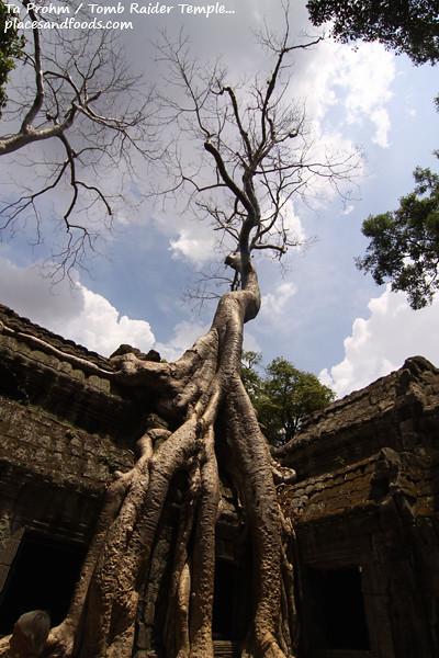 cambodia day 3 -15