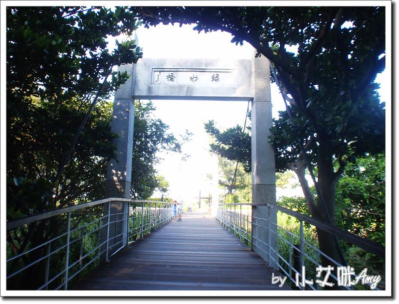 台東黑森林琵琶湖P7242424