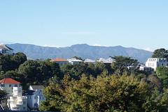 Wellington Buildings