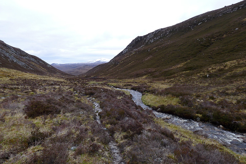 Looking towards Glen Orrin