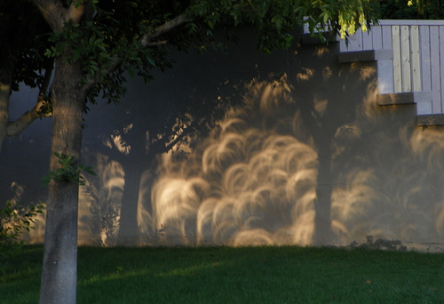 Thousands of solar eclipses reflected on wall