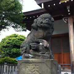狛犬探訪 鵜ノ木八幡は阿吽とも子連れ