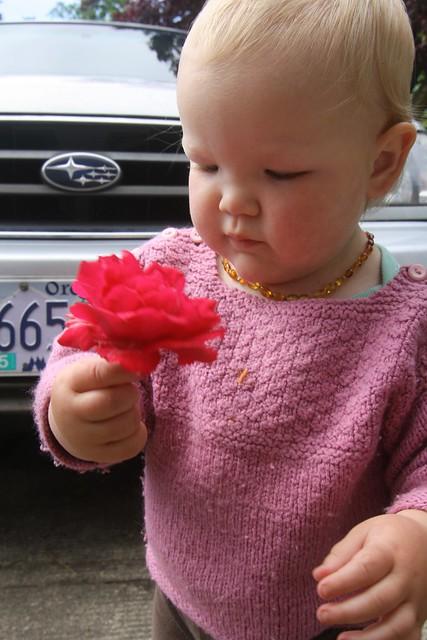 rose car