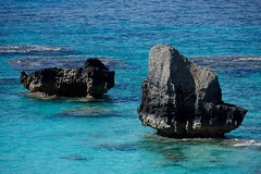 Some rocks off the coast of Bermuda.  This could become my new desktop picture easily.  Yes, the water really is that blue!