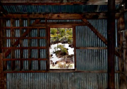 snow building tree window architecture freedom bush view mining ghosttown portal corrugatedmetal bw11 belmontmill